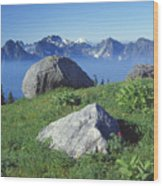 1m4862-tatoosh Range And Mt. St. Helens  Wood Print