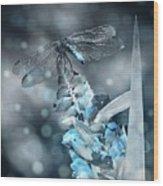 Tattered Wings B2 Wood Print