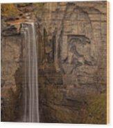 Taughannock Ten Wood Print