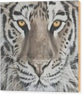 Taupe Tiger Wood Print