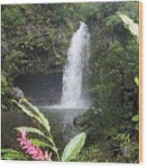 Taveuni, Tavoro Waterfall Wood Print
