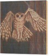 Tawny Owl In Flight Wood Print