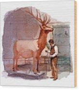 Taxidermist Wood Print