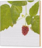 Tayberry Wood Print