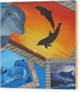 Taylors Dolphins Wood Print
