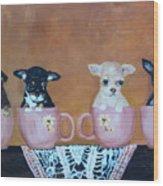 Tea Cup Chihuahuas Wood Print