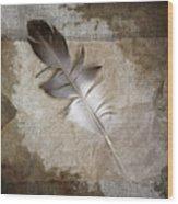 Tea Feather Wood Print