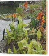 Tea Garden At San Antonio Zoo Crosswalk Wood Print