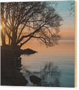 Teal And Orange Morning Tranquility With Rocks And Willows Wood Print