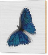 Butterfly Blur In Teal Blues Wood Print