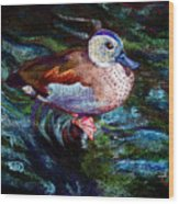 Teal Duck Of Naples Wood Print