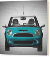 Teal Mini Coopre Wood Print