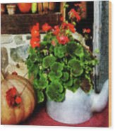 Teapot Filled With Geraniums Wood Print