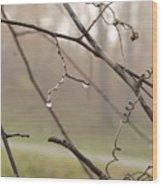 Teardrops Wood Print