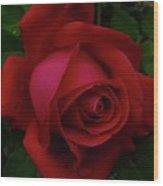 Teardrops Of A Rose Wood Print