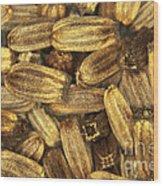 Teasel Seeds Wood Print