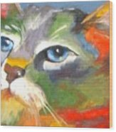 Technicolor Tabby Wood Print