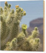 Teddy Bear Cholla Cactus With Flower Wood Print