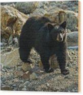 Teddy Bear Wood Print