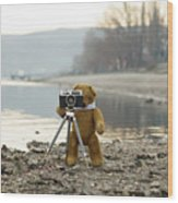 Teddy Bear Taking Pictures With An Old Camera By The Riverside Wood Print