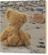Teddy On A Beach Wood Print
