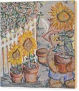 Teddy's Sunshine Wood Print