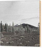 Teide Nr 11 In Bw Wood Print