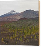 Teide Nr 12 Wood Print