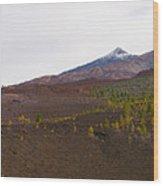 Teide Nr 13 Wood Print