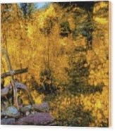 Telluride Spirituality - Colorado - Autumn Aspens Wood Print