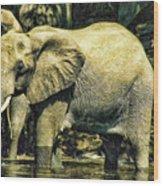 Tembo Wood Print