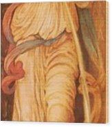 Temperantia 1872 Wood Print