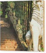 Temple Dog Wood Print