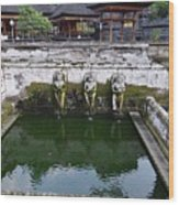 Temple Fountain Wood Print