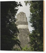 Temple In The Trees Tikal Guatemala Wood Print