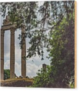 Temple Of Castor And Pollux Wood Print