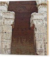 Temple Of Edfu I Wood Print