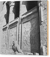 Temple Of Horus Wood Print