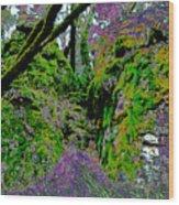 Temple Of Joy Wood Print
