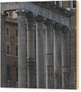 Temple Of Saturn Wood Print