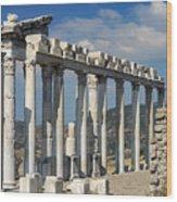 Temple Of Trajan View 3 Wood Print