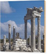 Temple Of Trajan View  Wood Print