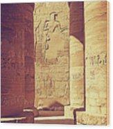 Temples Of Karnak  Wood Print