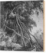 Temporary Tree Dwelling Wood Print
