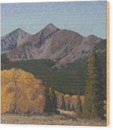 Ten Mile Autumn Wood Print