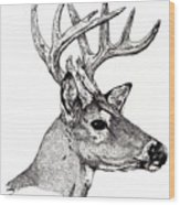 Ten Point Buck Wood Print