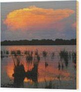 Ten Thousand Islands Florida Wood Print