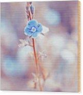 Tender Forget-me-not Flower Wood Print
