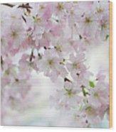 Tender Spring Pastels Wood Print