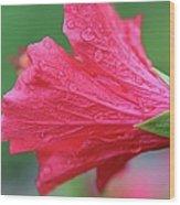 Tender Tears Wood Print